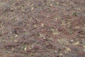 carpet look