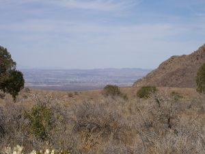 view of Las Cruces