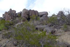 469 rocks