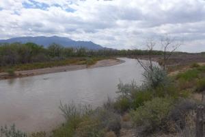Rio Grande by Kuaua Pueblo
